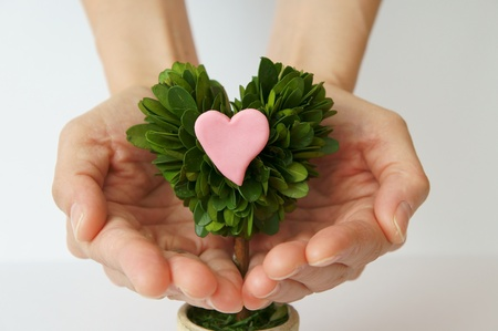 convey: Heart and decorative plant. Convey feelings.