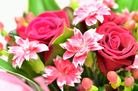 Beautiful bouquet of roses and carnations. (on white background) Stock Photo