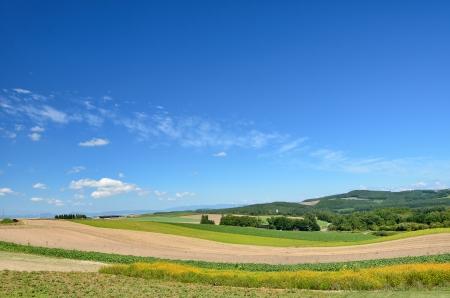 biei: Landscape of Biei, Hokkaido. (Blue sky and hills)