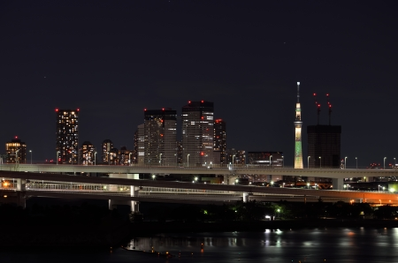 Tokyo Skytree seen from Odaiba. (Night Scene) photo