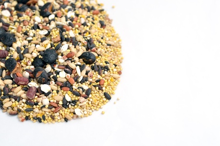 The close-up of mixed rice. (16 kinds of cereals) Stock Photo - 17083280