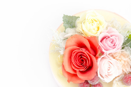 Natural preserved flowers and foliage on white background