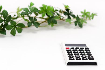 電卓と植物葉の白い背景に分離されました。