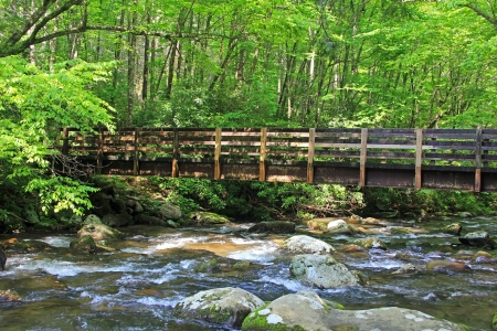 Bridge over Pigeon River, Great Smoky Mountains National Park, Tennessee photo