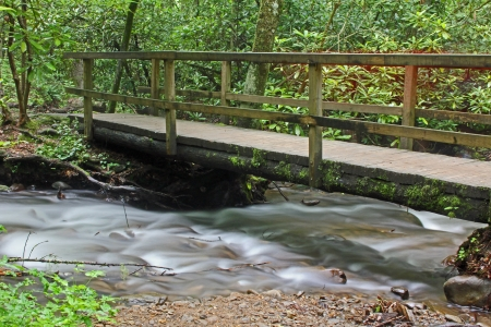 Wooden bridge over creek, Great Smoky Mountains National Park, tennessee photo