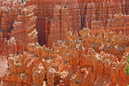 hoodoos: Red hoodoos in Bryce Canyon, Utah Stock Photo