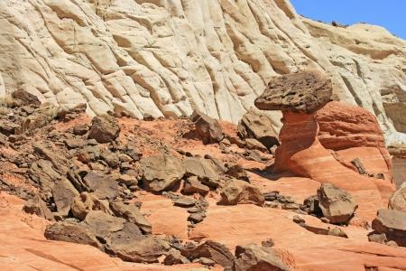 Toadstools among brown rocks, Utah Imagens