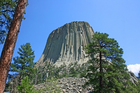Devil s Tower between the trees, Wyoming Stock Photo