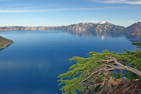 crater lake: Branch over Crater Lake, Oregon Stock Photo