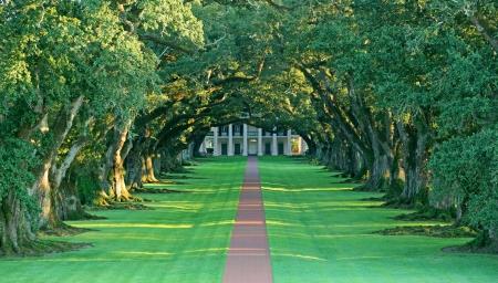 Oak Alley Plantation, Vacherie Louisiana Stock fotó - 23562428