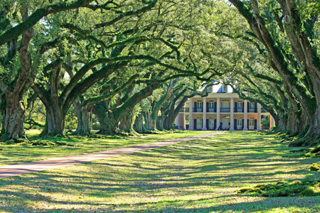 Oak Alley Plantation, Vacherie, Louisiana Stock fotó - 25849521