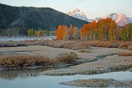 oxbow: Sunrise in Oxbow bend - Grand Teton National Park, Wyoming