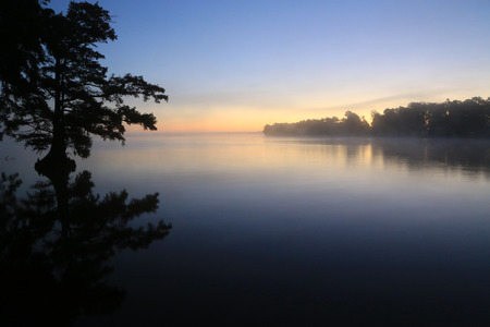 Sunrise over Reelfoot Lake, Tennessee 스톡 콘텐츠