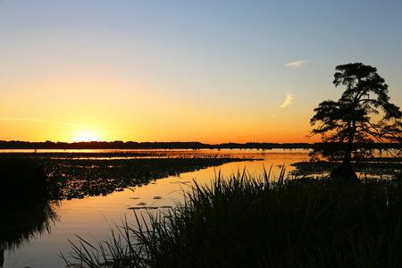 tennesse: Puesta de sol en el lago Reelfoot, Tennessee Foto de archivo