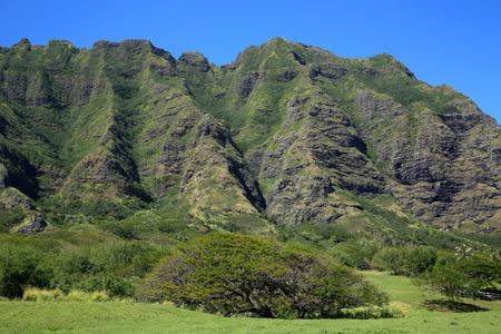 Oahu: Kualoa Ranch cliffs  Oahu Hawaii