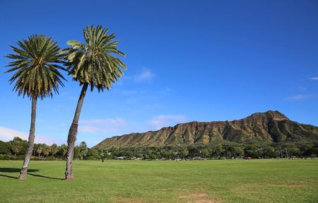 Two palm trees and Diamond Head  Honolulu Oahu Hawaii