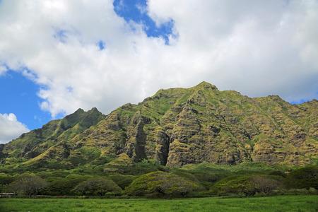 Oahu: Meadow, trees and cliffs - Kualoa Ranch, Oahu, Hawaii Stock Photo