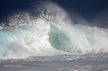 north shore: Pipe wave - North Shore, Oahu, Hawaii