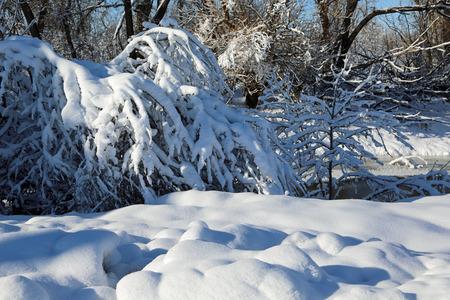 unaffected: Winter landscape - Montana Stock Photo