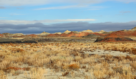 Colorful desert of Bisti - New Mexico