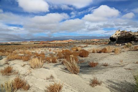 wilderness area: Landscape in BistiDe-Na-Zin Wilderness Area, New Mexico