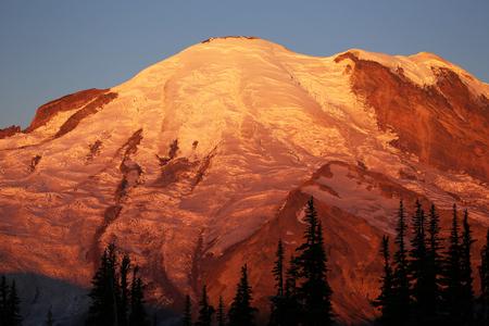 mount rainier: Golden Mount Rainier at sunrise - Washington Stock Photo