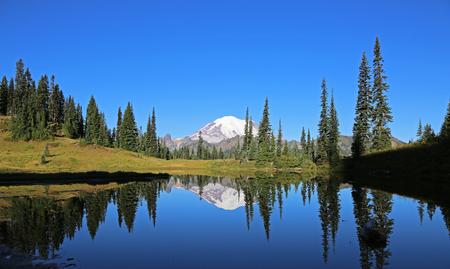 mount rainier: On Upper Tipsoo Lake- Mount Rainier NP, Washington