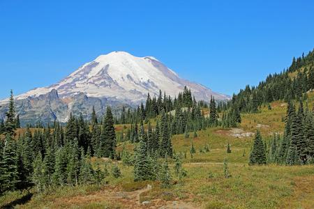 mount rainier: Mount Rainier National Park, Washington Stock Photo