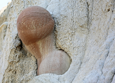 cannonball: Cannonball concretions - North Dakota Stock Photo