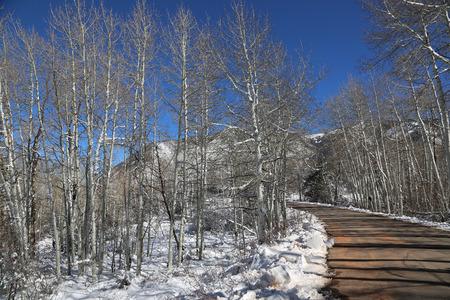 Loop road in La Sal Mountains, Utah