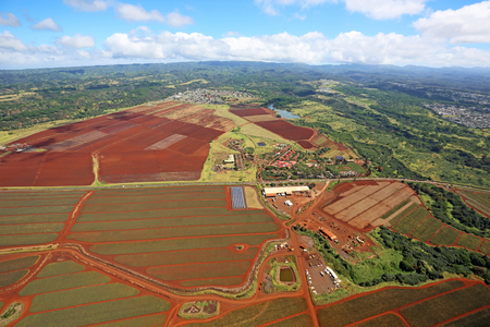 on the dole: Birds-eye view at Dole Plantation, Oahu, Hawaii Stock Photo