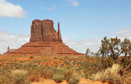 butte: West Mitten Butte and bush, Arizona