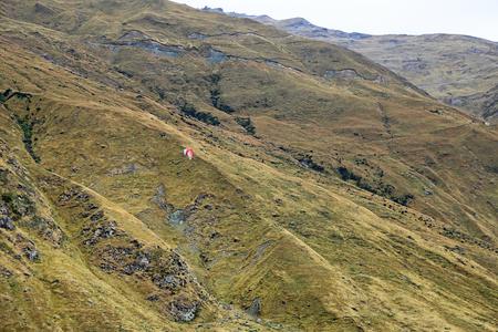 Paragliding, New Zealand