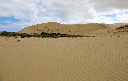 Giant sand dunes, New Zealand