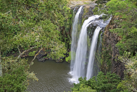 Side view at Whangarei Falls, New Zealand