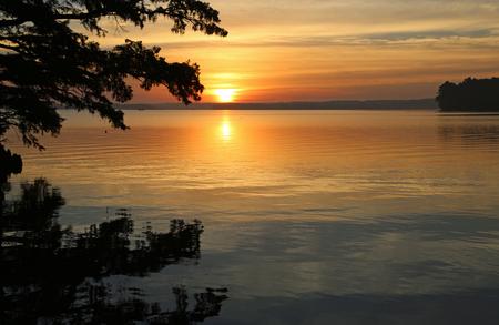 Sunrise glory - Reelfoot Lake, Tennessee