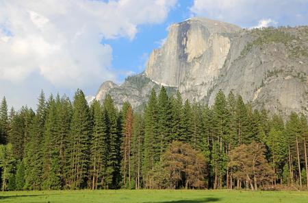 Half Dome over forest, California Stock Photo