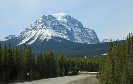 Mt Temple over the forest- Banff NP, Canada Imagens