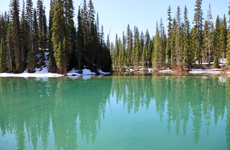 Turquoise water of Emerald Lake - Yoho NP, Canada Stok Fotoğraf