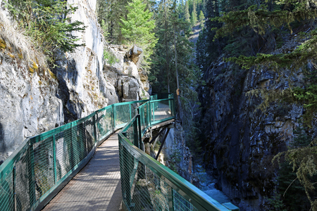 The trail in Johnston Canyon, Banff NP, Canada 免版税图像