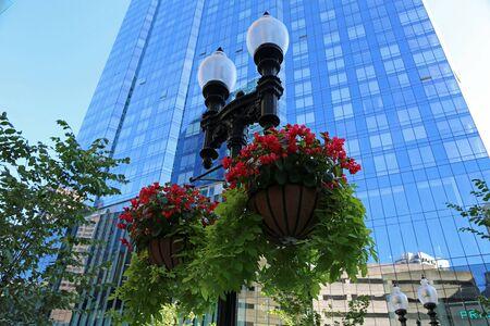 Street lantern and flowers - Boston, Massachusetts Reklamní fotografie
