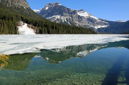 Clear water of Emerald Lake, Yoho NP, Canada Banco de Imagens