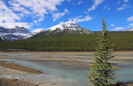 Landscape in Sunwapta River Valley, Jasper NP, Canada Imagens