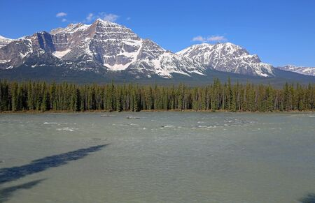 On Athabasca River, Jasper NP, Canada Imagens
