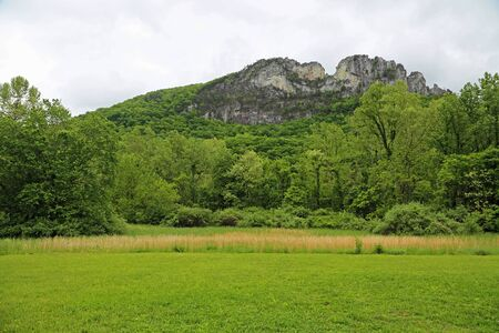 Seneca Rocks and the meadow, West Virginia