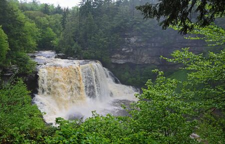 View at Blackwater Falls, West Virginia
