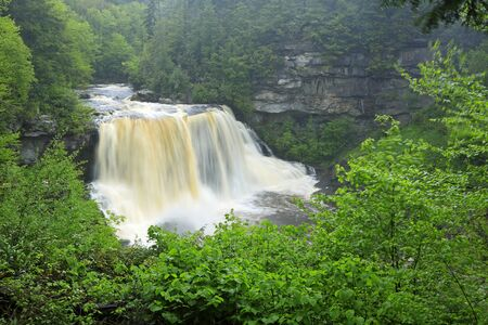 Blackwater forest and falls, West Virginia