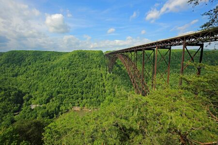 The forest and the bridge, West Virginia