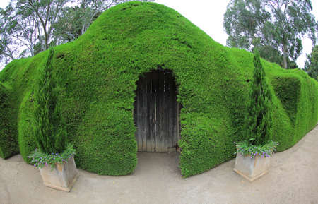 The door in the hedge - The Ashcombe Maze and Lavender Gardens, Victoria, Australia