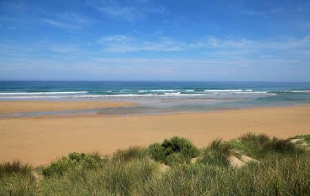 Landscape with Venus Bay - Victoria, Australia 免版税图像